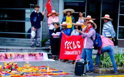 #EcuadorLibreDeTransgénicos, a la espera de sentencia.
