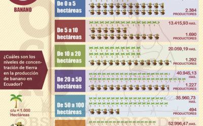 El modelo primario exportador y los niveles de concentración de la tierra en el Ecuador