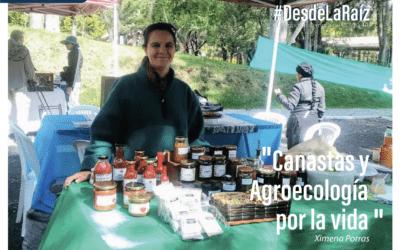 VOCES CAMPESINAS Ximena Porras «Canastas por la Vida»