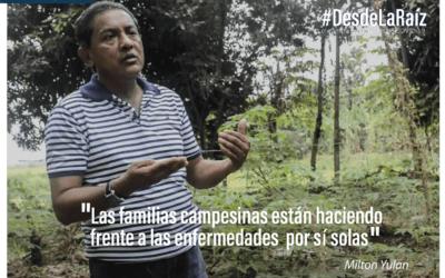 VOCES CAMPESINAS Milton Yulán «las familias campesinas están haciendo frente a las enfermedades por si solas»
