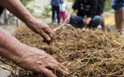 """Un año de Derechos Campesinos: """"Sin los campesinos nunca se realizará adecuadamente el derecho a la alimentación de toda la sociedad"""""""
