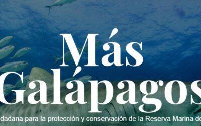 Ampliación de Reserva Marina de Galápagos no afectaría a pesca nacional, afirman organizaciones