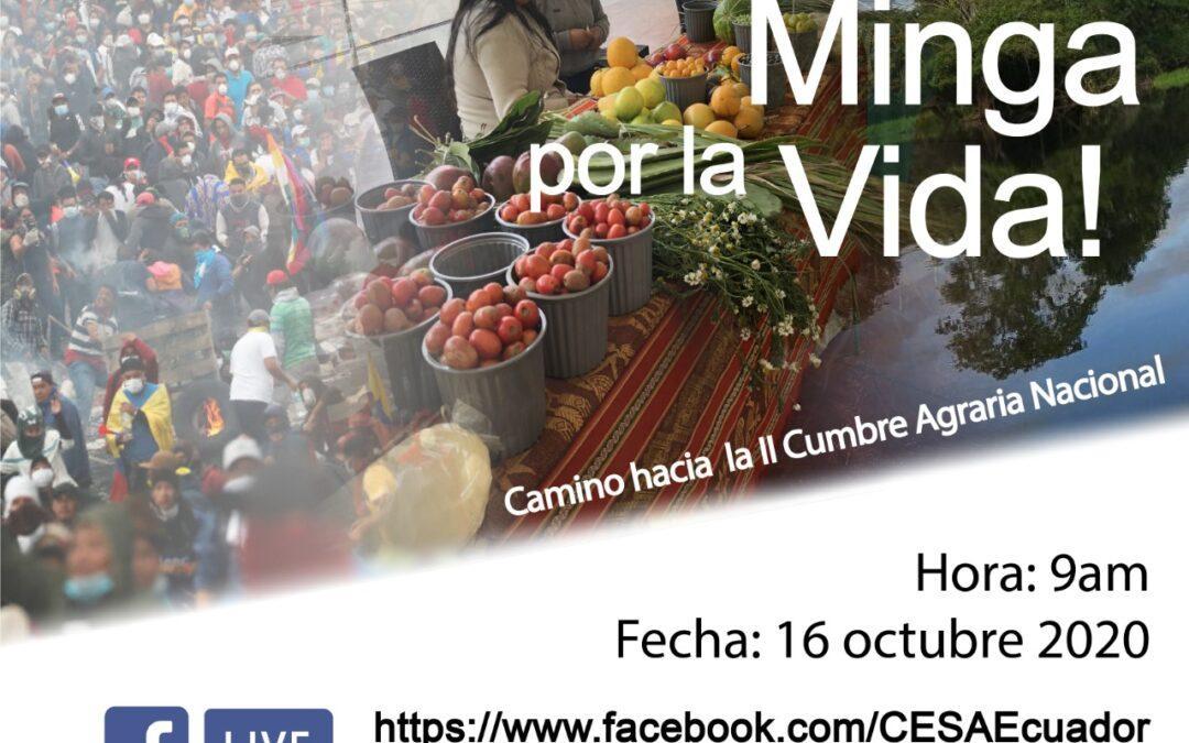 """""""La soberanía alimentaria no es viable con las reglas del sistema actual"""" Foro Virtual Minga Por La Vida 16 Oct 2020"""