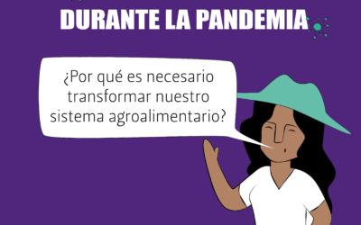 [ESPECIAL #ALTERNativxs]  Infografías – La alimentación durante la pandemia