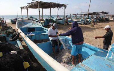 La Niña presagia realidades distintas para el agro y la pesca