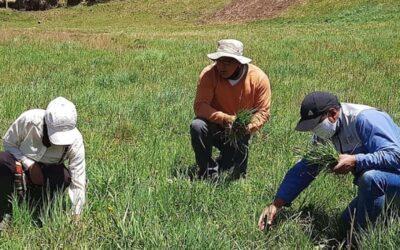 Biodiversidad, fertilidad y conservación se analizarán durante la Semana del Suelo