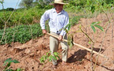 En Ecuador, 12,3 millones de hectáreas están a cargo de los productores agropecuarios