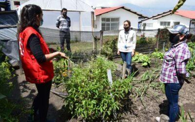 Quito transformará su sistema agroalimentario frente al cambio climático