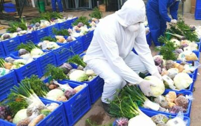 Ecuador resaltó el programa AgrotiendaEc en el foro agropecuario andino