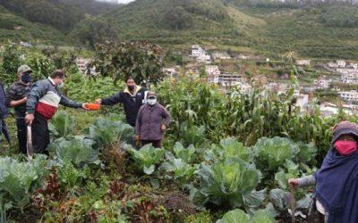 Los barrios de la parroquia La Mena esquivan al covid-19