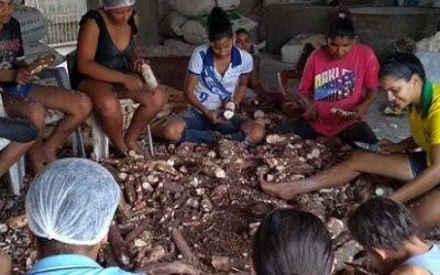 Cloc- Vía Campesina: Pronunciamiento ante la Cumbre de Sistemas Alimentarios