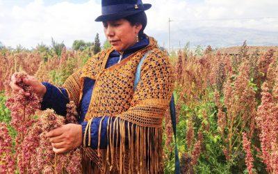 """Productores conocen """"Agricultura por contrato"""", estrategia para comercializar productos agropecuarios"""