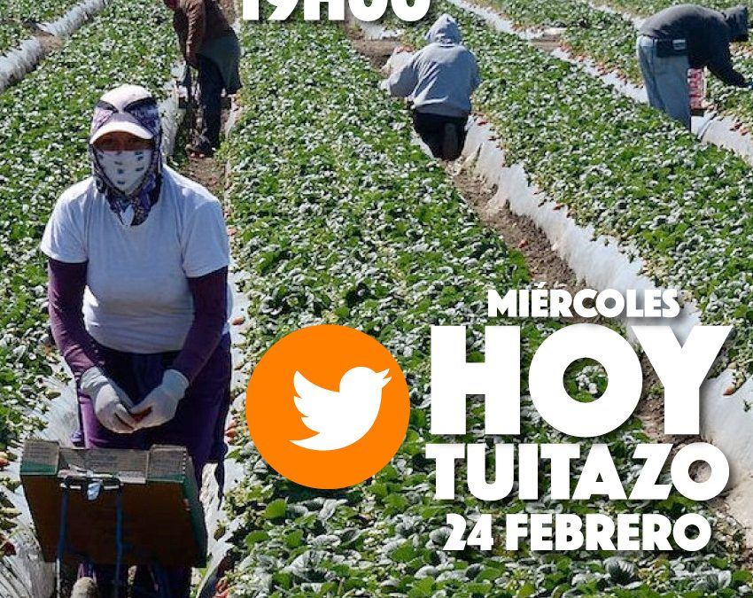 Tuitazo #RechazoLeyAgropecuaria