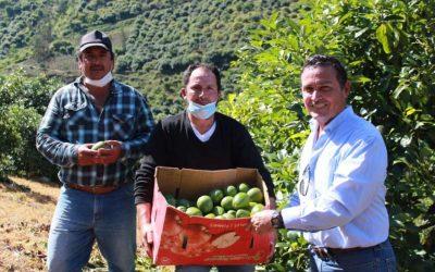 Productores de Patate reciben apoyo para instalar sistemas de riego y legalizar tierras