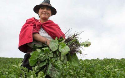 La ONU y el Estado estrechan lazos para apoyar el desarrollo de las mujeres rurales