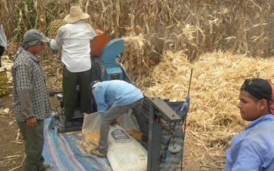 El 8 de marzo INICIA el programa buen líder rural, de DIRIGENTE a GERENTE