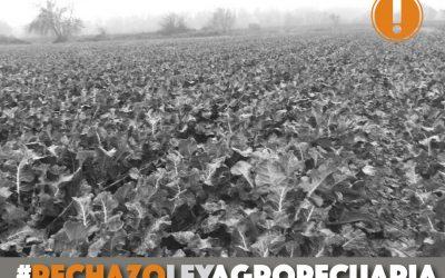 Alianza por los Derechos Humanos Ecuador se pronuncia por la falta de consulta prelegislativa de Ley Agropecuaria