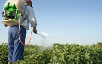 Agricultura cubana potencia uso de bioproductos