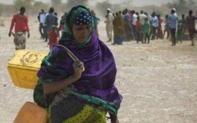 FAO alerta por daños de catástrofes a sistemas agroalimentarios