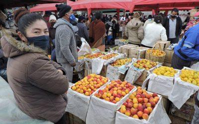 Preocupación en productores de Tungurahua por bajos precios de las frutas de temporada
