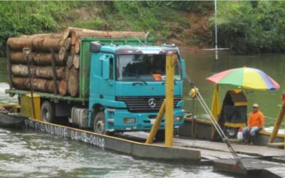 Nuevo estudio: en los últimos 26 años Ecuador ha perdido más de 2 millones de hectáreas de bosque