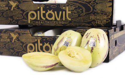 El pepino dulce de Carchi desembarca en los supermercados de la UE y Estados Unidos