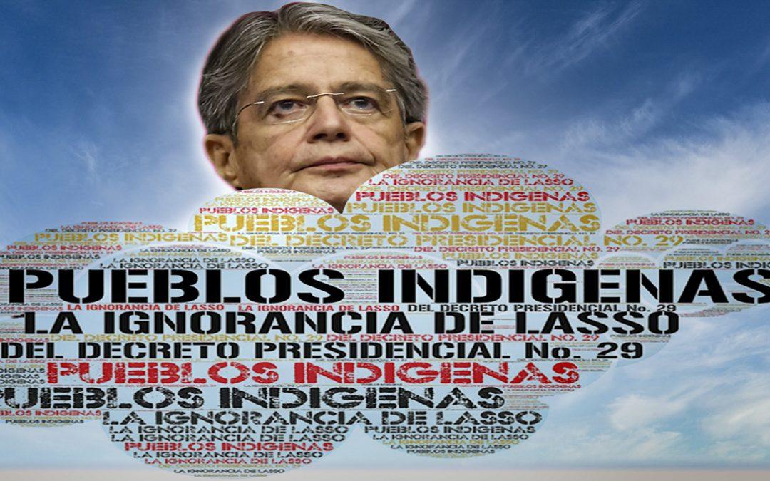 PUEBLOS INDÍGENAS Y EL DECRETO PRESIDENCIAL No 29