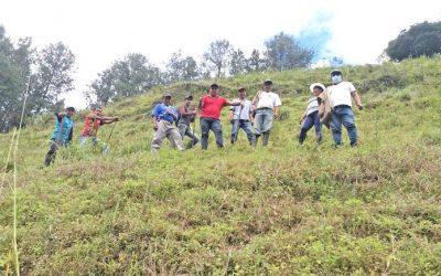 Vertientes con proyecto de reforestación integral