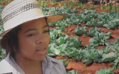 """Semillas de Libertad"" un documental que invita a volver al campo"