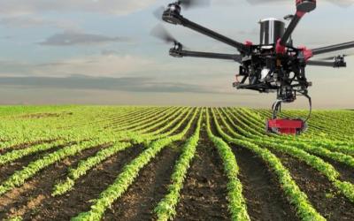 AgTech en Argentina: agricultura y tecnología digital al servicio de las corporaciones