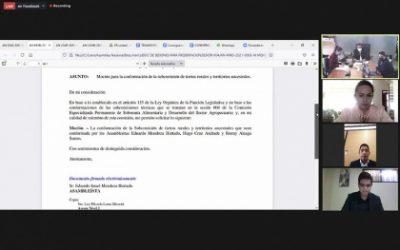 SOBERANÍA ALIMENTARIA CONVOCARÁ A MINISTRA DE AGRICULTURA, TANLLY VERA