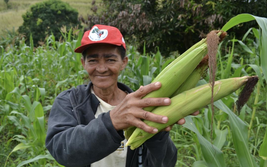 """25 años de Soberanía Alimentaria """" es un derecho de los pueblos para definir sus políticas agrícolas y alimentarias, producir alimentos, y alimentos saludables para todo el pueblo"""""""