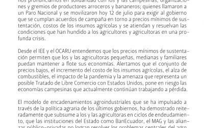 Pronunciamiento Ante el Paro Nacional Campesino –Pequeños productores arroceros, bananeros y otros.