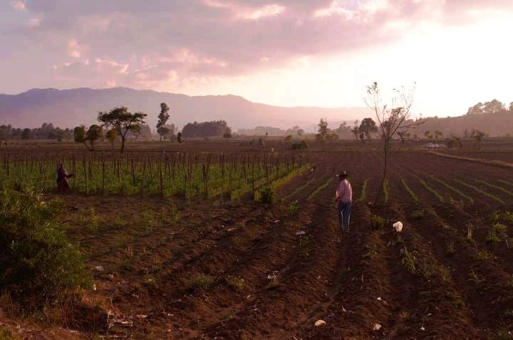 Campesinos y campesinas de Urcuquí reclaman tierras en Yachay