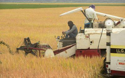Sector agropecuario anuncia paro nacional por falta de acuerdos con el Gobierno