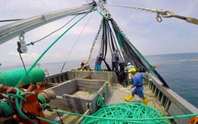 Pesca: Ecuador desplaza a Tailandia por la subida de los fletes
