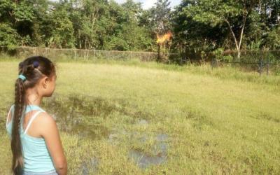 Histórica sentencia para apagar mecheros de Amazonía ya fue notificada; demandantes analizan próximos pasos