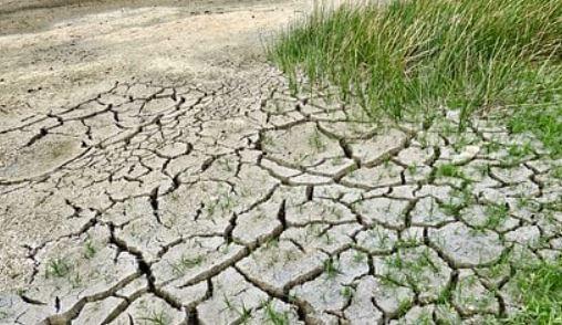Población, agua, biodiversidad, energía y alimentación: los pilares de una crisis global