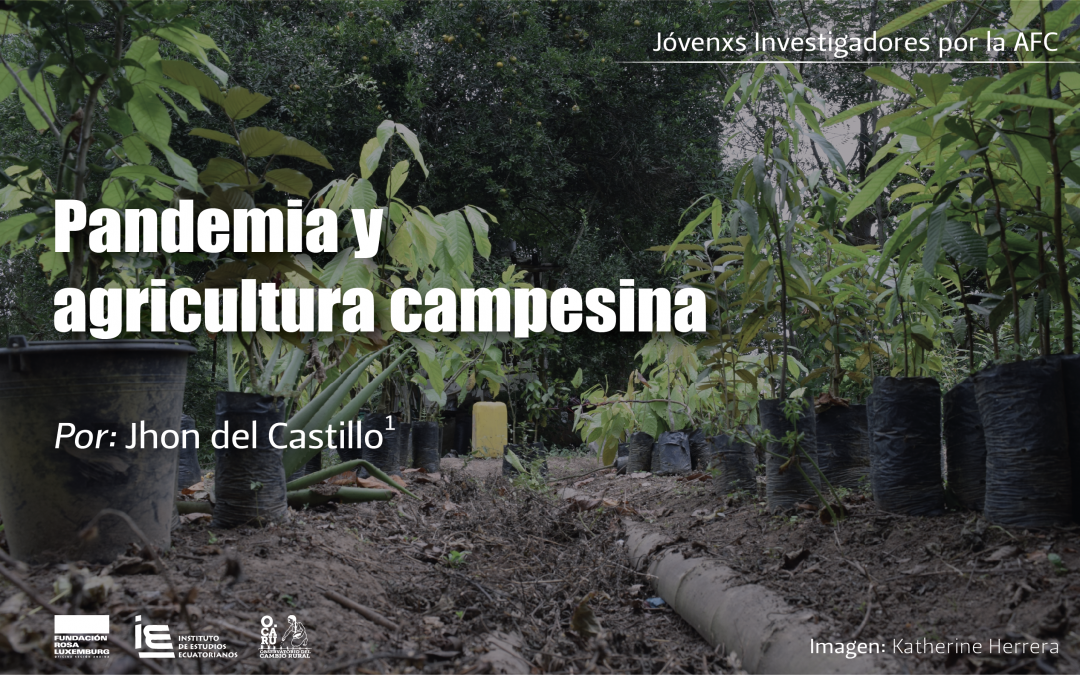 Pandemia y agricultura campesina