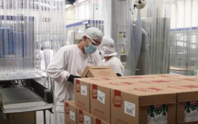 Sector lechero quiere exportar su excedente a Perú, Panamá y Estados Unidos