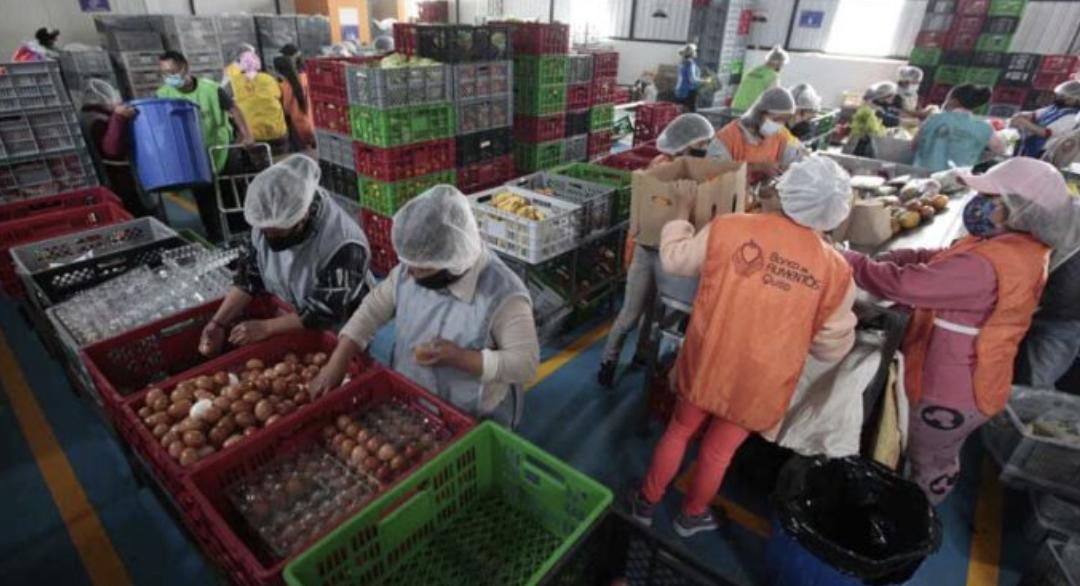 Más personas acuden a los bancos de alimentos en Quito y Guayaquil